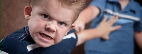 A agressividade das crianças, devido ao atraso na linguagem ou outros problemas na fala!